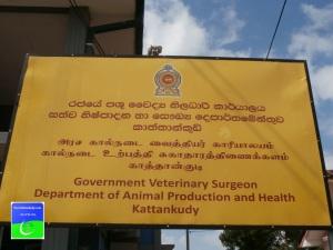 Govt Vet Hospital kattankudywww.yourkattankudy.com