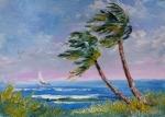 wind air sea