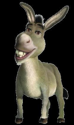 Donkey[1]