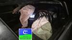 car-air-bag