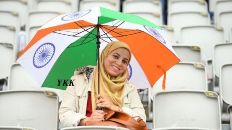 cricket india world cup fan